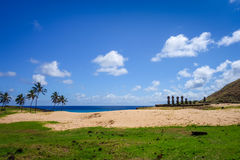 Anakena palm beach and Moais statues site ahu Nao Nao, easter is Stock Photos