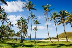Anakena plaża Nau Nau na Wielkanocnej wyspie i Ahu Obraz Stock