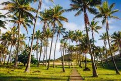 Anakena plaża Nau Nau na Wielkanocnej wyspie i Ahu Zdjęcie Royalty Free