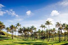 Anakena plaża Nau Nau na Wielkanocnej wyspie i Ahu Zdjęcia Stock