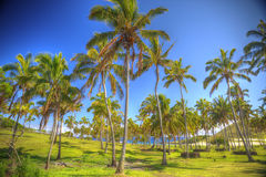 Anakena, a white coral sand beach. Situated on the northern tip of Rapa Nui (Easter Island stock photo