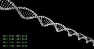 Analisando a estrutura do ADN, pesquisa judicial, desordens genéticas dos genes, ciência Molécula de vidro capaz de dar laços ilustração royalty free