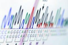 Analisando o gráfico da ciência na tela Fotos de Stock
