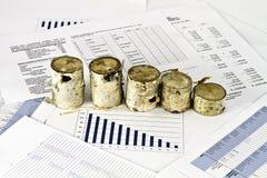 Analise del negocio y madera de abedul Imágenes de archivo libres de regalías