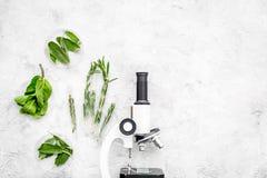 Analisi alimentare Gli antiparassitari liberano le verdure Erbe rosmarini, menta vicino al microscopio sullo spazio grigio della  fotografia stock libera da diritti