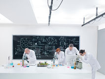 Analisi dei colleghe del laboratorio di chimica Immagine Stock