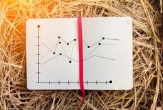 Analisi del grafico commerciale sul taccuino con struttura del fieno jpg Immagini Stock Libere da Diritti