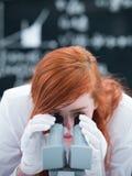 Analisi del microscopio del laboratorio Fotografie Stock