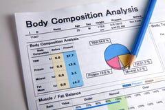 Analisi di composizione corporea immagini stock libere da diritti
