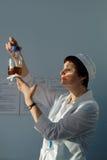 Analityk biologiczny przedsięwzięcie Vita robi testowi Zdjęcia Royalty Free