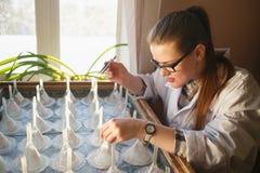 Analizing zaden van de vrouwen de gediplomeerde student op germinatielijst stock foto