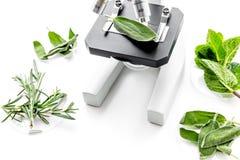 Analizować karmowego pojęcie zdrowych produktów Ziele rozmaryny, mennica pod mikroskopem na białej tło odgórnego widoku przestrze Fotografia Royalty Free