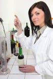 analizy wino zdjęcie royalty free