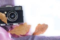 Analog fotokamera för tappning i Leaveson för torr lönn vit bakgrund, bästa sikt royaltyfri fotografi