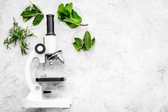 Analyse alimentaire Les pesticides libèrent des légumes Romarin d'herbes, microscope proche en bon état sur l'espace gris de copi photographie stock