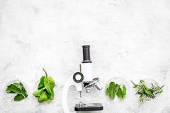 Analyse alimentaire Les pesticides libèrent des légumes Romarin d'herbes, microscope proche en bon état sur l'espace gris de copi photo libre de droits