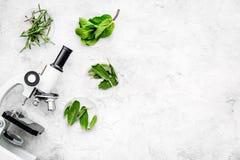 Analyse alimentaire Les pesticides libèrent des légumes Romarin d'herbes, microscope proche en bon état sur l'espace gris de copi images stock