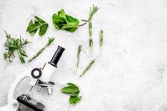 Analyse alimentaire Les pesticides libèrent des légumes Romarin d'herbes, microscope proche en bon état sur l'espace gris de copi image stock