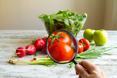 Analyse de la nourriture photographie stock libre de droits