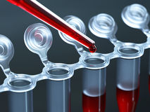 Analyse de sang de laboratoire Image libre de droits