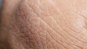 Analyse humaine de peau banque de vidéos