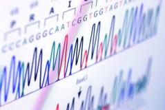 Analysieren des Wissenschaftsdiagramms auf Bildschirm Lizenzfreie Stockbilder