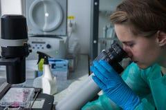 Analysieren von Ergebnissen des Experimentes im Labor Stockfotografie