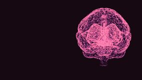 Analysing of right and left hemispheres of a human brain rotating on dark background.