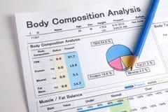 Analysis of body Royalty Free Stock Image