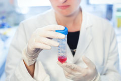 Analysis research in clinical laboratory Royalty Free Stock Images