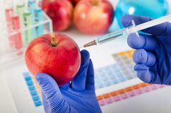 Analyst injects liquid into apple. Genetically modified food concept. Analyst injects liquid into apple. Genetically modified food in lab concept stock image
