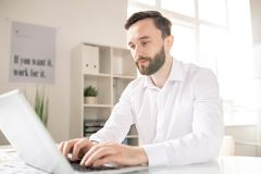 Analyst by workplace. Bearded analyst or broker in white shirt looknig at laptop display while browsing in the net and searching for online data stock photography