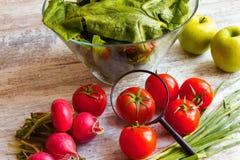 Analyzing food Stock Photos