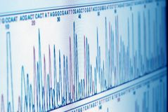 Analyzing science graph on screen Royalty Free Stock Photography