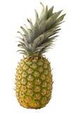 Ananás Imagens de Stock