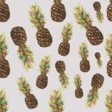 Ananás do abacaxi com as folhas coloridas no fundo cinzento Teste padrão sem emenda da aquarela ilustração do vetor