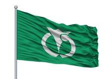 Anan City Flag On Flagpole, Japão, prefeitura de Tokushima, isolada no fundo branco Ilustração do Vetor