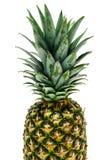 Ananas świeża owoc Obraz Royalty Free