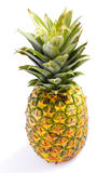 ananas Zdjęcie Royalty Free