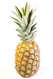 Ananas. Isolated on a white background Royalty Free Stock Image