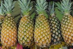 Ananas Fotografia Stock