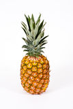 ananas Obrazy Stock