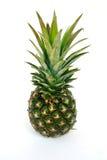 ananas Zdjęcie Stock
