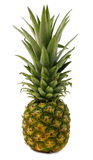 Ananas Stockfotos