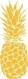 Ananas Royalty-vrije Stock Fotografie