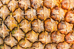 Free Ananas Stock Images - 48454764