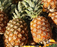 Ananas Photographie stock