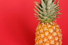Ananas Stock Foto