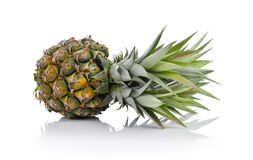 Ananas illustration stock