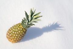 Ananas Lizenzfreies Stockbild